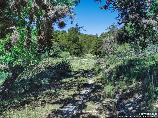 130 Dripping Springs Rd North, Comfort, TX 78013 (MLS #1524482) :: Tom White Group