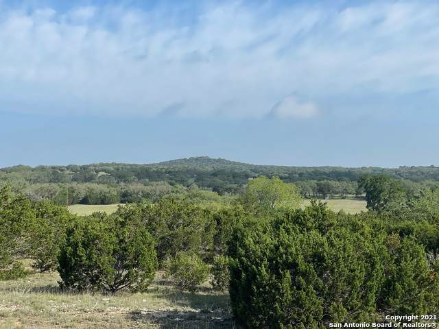 351 Vista View Pl, Spring Branch, TX 78070 (MLS #1524488) :: The Lugo Group