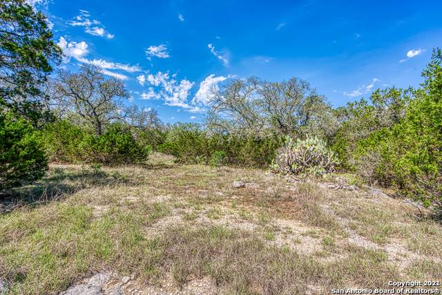 603 Coyote Ridge Dr, Spring Branch, TX 78070 (MLS #1524713) :: The Mullen Group   RE/MAX Access