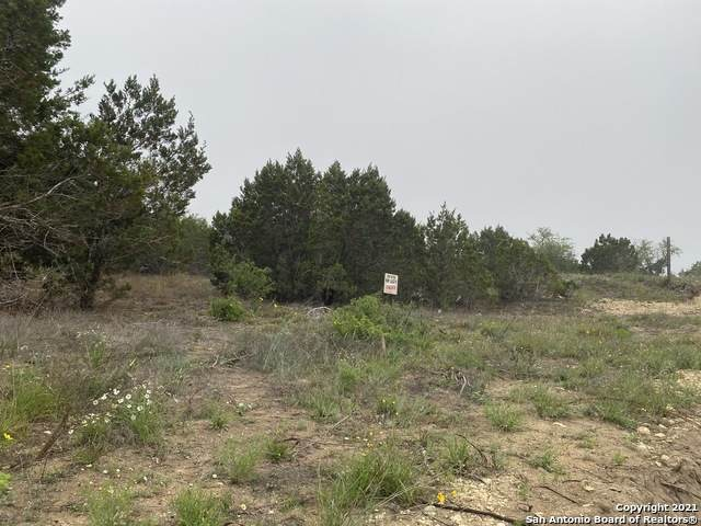 23126 Taylor Ridge, San Antonio, TX 78255 (MLS #1524755) :: Carolina Garcia Real Estate Group