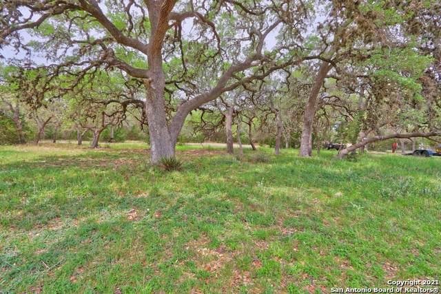 11520 AND 11550 Fm 32, Fischer, TX 78623 (MLS #1524761) :: Keller Williams Heritage