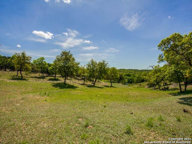 TBD Thunder Xing, Boerne, TX 78006 (MLS #1525076) :: Santos and Sandberg