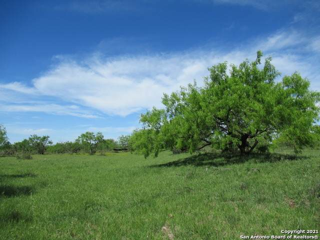TBD County Road 419, Rochelle, TX 76872 (MLS #1525133) :: The Lugo Group