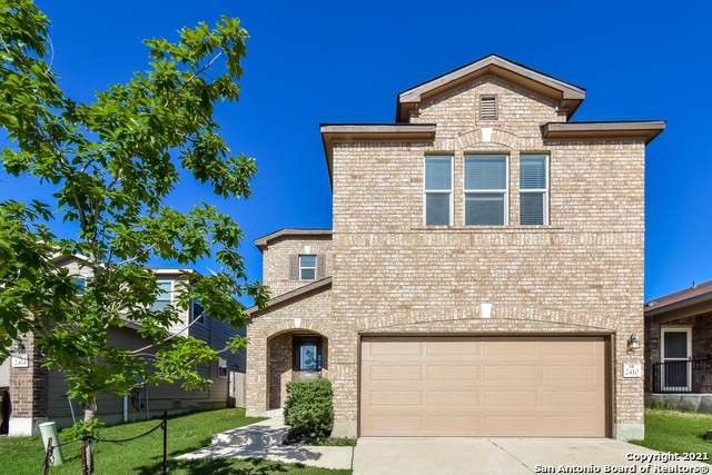 2410 Yaupon Cyn, San Antonio, TX 78244 (MLS #1525164) :: The Glover Homes & Land Group