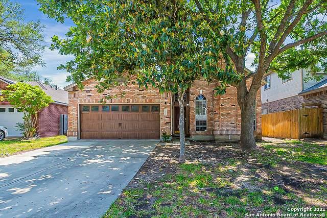 13710 Chittim Meadows, San Antonio, TX 78232 (MLS #1525205) :: The Real Estate Jesus Team
