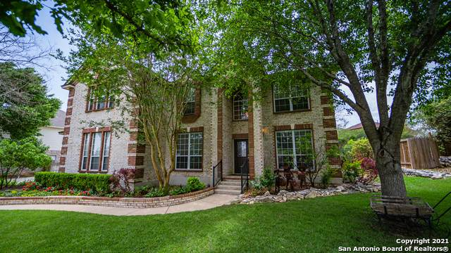 22415 Banister, San Antonio, TX 78259 (MLS #1525266) :: The Lugo Group