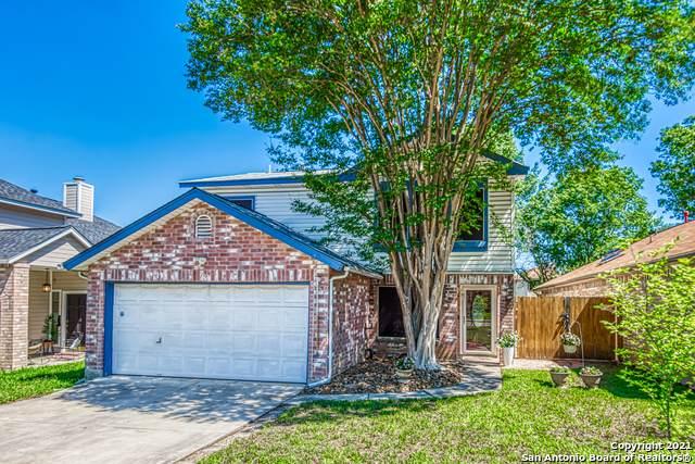 7567 Beaver Tree, San Antonio, TX 78249 (MLS #1525309) :: Carolina Garcia Real Estate Group