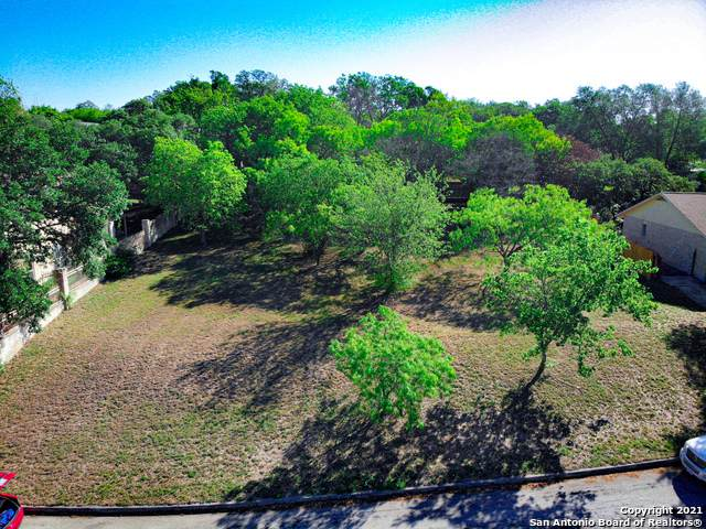 120 Shalimar Dr, Castle Hills, TX 78213 (MLS #1525373) :: 2Halls Property Team | Berkshire Hathaway HomeServices PenFed Realty