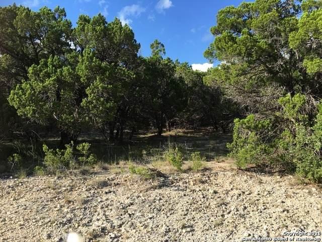 LOT 69 Scenic, Bandera, TX 78003 (MLS #1525385) :: Tom White Group