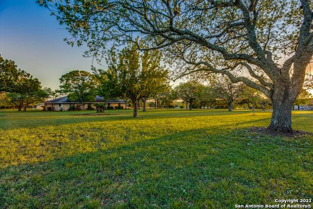 135 Steel Valley Dr, Boerne, TX 78006 (MLS #1525460) :: Alexis Weigand Real Estate Group