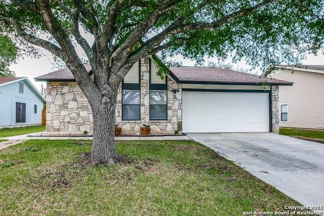 6742 Country Swan, San Antonio, TX 78240 (MLS #1525504) :: Tom White Group