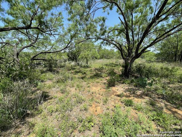 LOTS 2650-2652 Avenue J, Christine, TX 78012 (MLS #1525548) :: Tom White Group