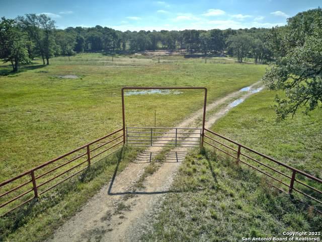 1251 Nockenut Rd, Seguin, TX 78155 (MLS #1525624) :: Keller Williams Heritage