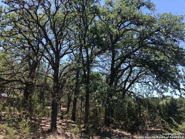 LOT 18 Park Rd, Bandera, TX 78003 (MLS #1525697) :: The Glover Homes & Land Group