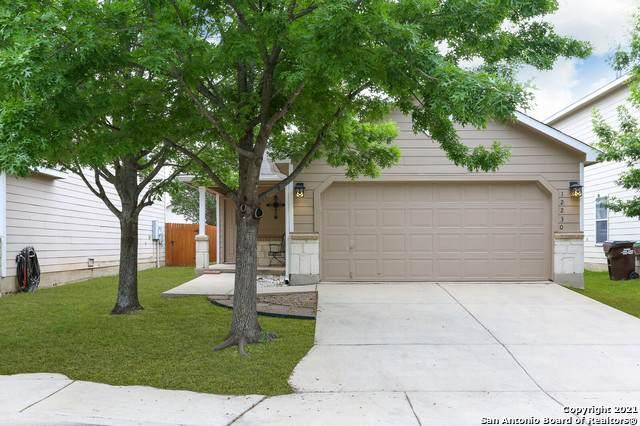 12230 Autumn Cherry, San Antonio, TX 78254 (MLS #1525741) :: The Glover Homes & Land Group