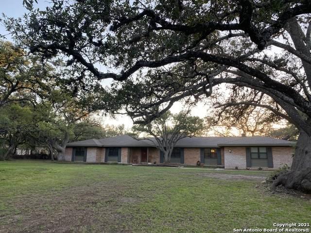 416 Cliffside Dr, Shavano Park, TX 78231 (MLS #1525781) :: Beth Ann Falcon Real Estate
