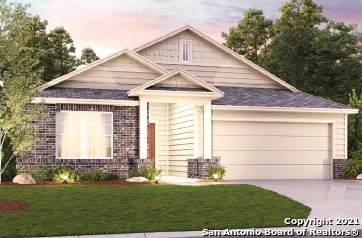 1153 Amber Lake, Seguin, TX 78155 (MLS #1525854) :: Tom White Group