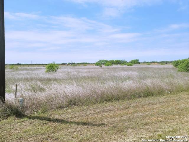 105 Gentle Breeze, Floresville, TX 78114 (MLS #1525943) :: The Rise Property Group