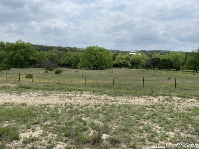 1638 Rebecca Ranch Rd, Canyon Lake, TX 78133 (MLS #1526012) :: The Rise Property Group