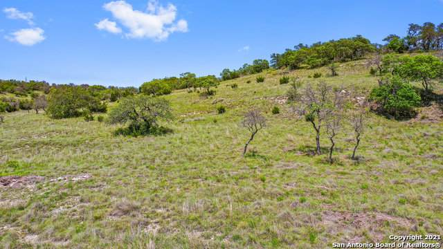 00 Fallen Acorn Dr, Blanco, TX 78606 (MLS #1526219) :: The Mullen Group | RE/MAX Access