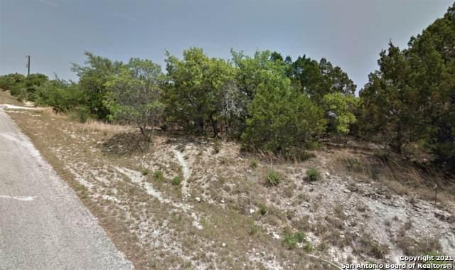 313 La Paloma Dr, Canyon Lake, TX 78133 (MLS #1526368) :: Neal & Neal Team