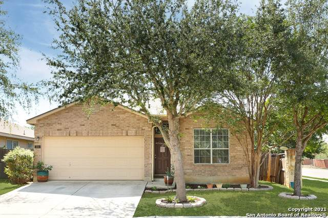 504 Starling Creek, New Braunfels, TX 78130 (MLS #1526387) :: 2Halls Property Team | Berkshire Hathaway HomeServices PenFed Realty