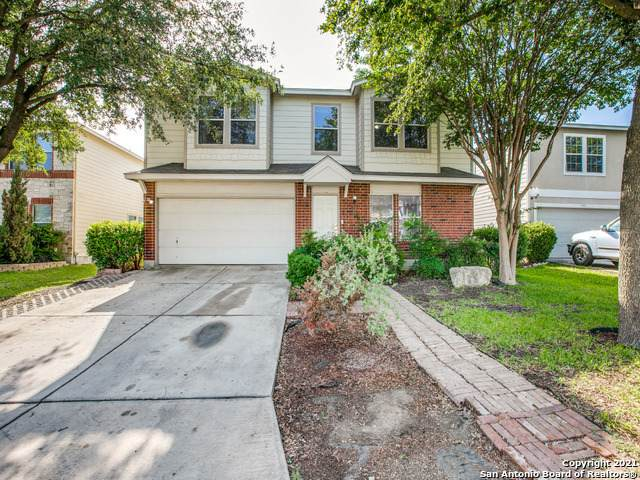 9006 Mimosa Manor, San Antonio, TX 78245 (MLS #1526604) :: The Mullen Group | RE/MAX Access