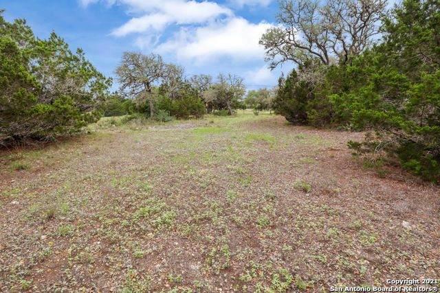 201 Broomweed Circle, Spring Branch, TX 78070 (MLS #1526755) :: Keller Williams Heritage