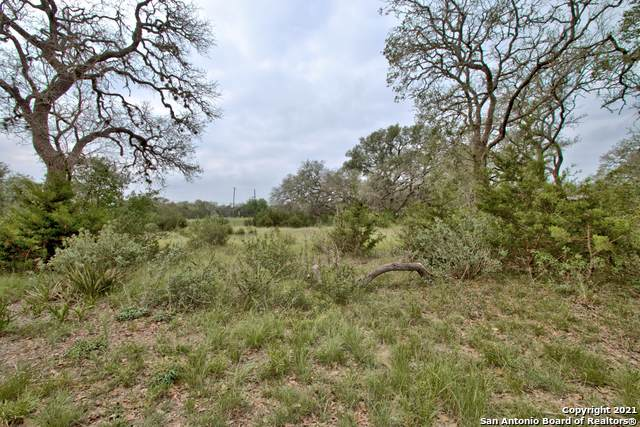 2044 Potters Creek Rd, Canyon Lake, TX 78133 (MLS #1526756) :: Alexis Weigand Real Estate Group