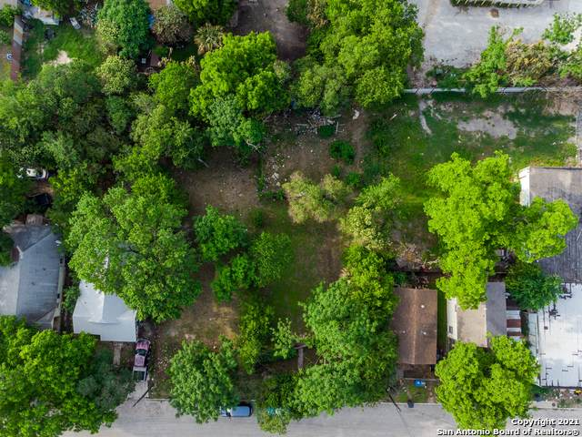 1217 N Center St, San Antonio, TX 78202 (MLS #1526817) :: The Mullen Group | RE/MAX Access