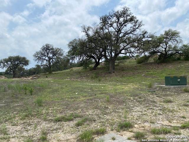 2671 Campestres, Spring Branch, TX 78070 (MLS #1526843) :: Williams Realty & Ranches, LLC