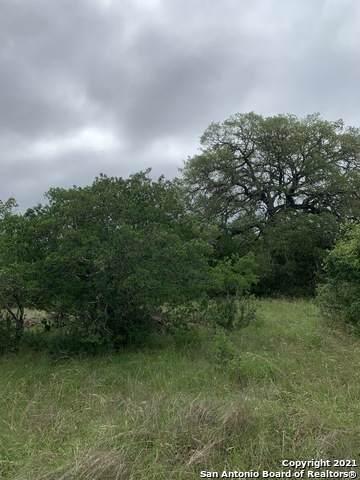 1514 Vintage Way, New Braunfels, TX 78132 (MLS #1526860) :: Keller Williams Heritage