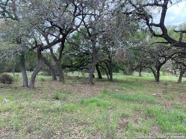 2432 Campestres, Spring Branch, TX 78070 (MLS #1526865) :: Williams Realty & Ranches, LLC