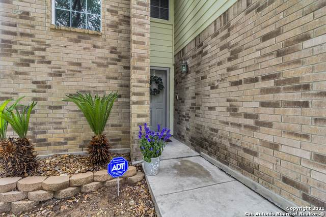 11103 Catchfly Field, Helotes, TX 78023 (MLS #1526872) :: The Mullen Group | RE/MAX Access