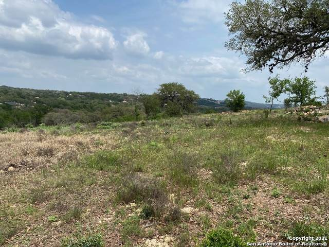 2466 Campestres, Spring Branch, TX 78070 (MLS #1526873) :: Williams Realty & Ranches, LLC