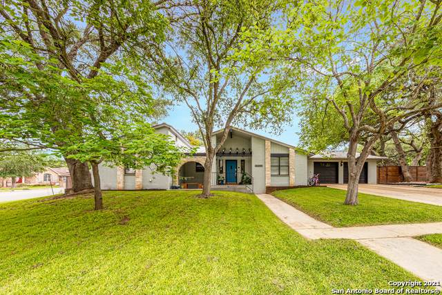 203 Elmwood Dr, New Braunfels, TX 78130 (#1526890) :: The Perry Henderson Group at Berkshire Hathaway Texas Realty