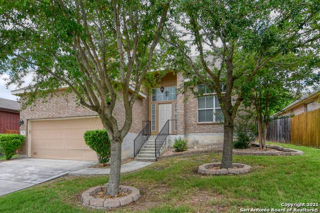 230 Raleigh Dr, Cibolo, TX 78108 (#1527065) :: The Perry Henderson Group at Berkshire Hathaway Texas Realty