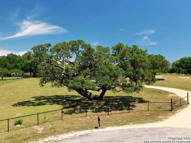 637 Boldt View Dr, Adkins, TX 78101 (MLS #1527085) :: Williams Realty & Ranches, LLC