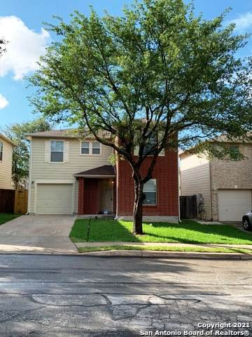 4919 Ancient Elm, San Antonio, TX 78247 (#1527173) :: The Perry Henderson Group at Berkshire Hathaway Texas Realty