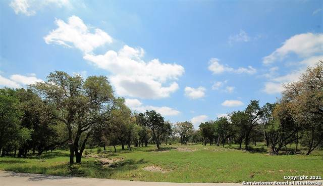 8010 Green Glen Dr, San Antonio, TX 78255 (MLS #1527193) :: The Mullen Group | RE/MAX Access