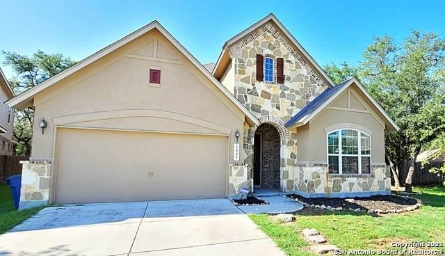 22946 Malabar Peak, San Antonio, TX 78261 (MLS #1527220) :: The Lugo Group