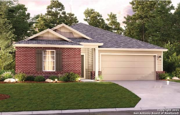 1140 Amber Lake, Seguin, TX 78155 (MLS #1527353) :: Bexar Team