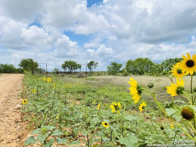 TBD County Road 2300 Lot 4, Pearsall, TX 78061 (MLS #1527370) :: The Castillo Group