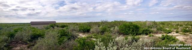128 Bobcat Dr, George West, TX 78022 (MLS #1527479) :: 2Halls Property Team | Berkshire Hathaway HomeServices PenFed Realty