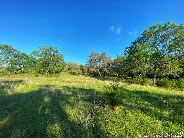 43 Lost Valley, Boerne, TX 78006 (MLS #1527512) :: The Castillo Group