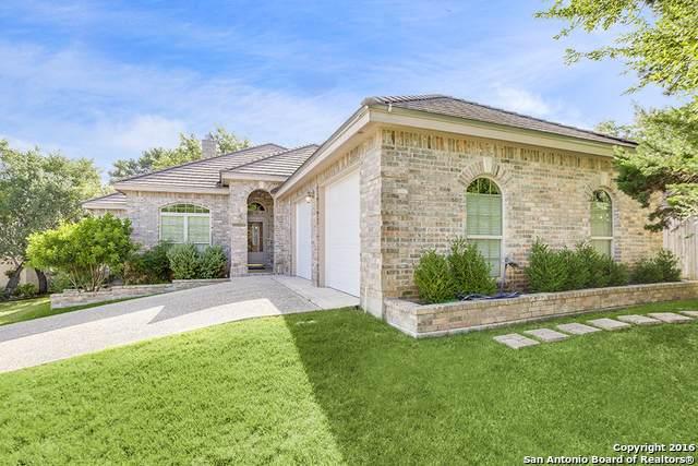 29635 Terra Bella, Boerne, TX 78015 (MLS #1527536) :: The Castillo Group
