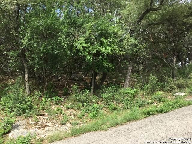 190 Oakridge St, Canyon Lake, TX 78133 (MLS #1527600) :: Carolina Garcia Real Estate Group