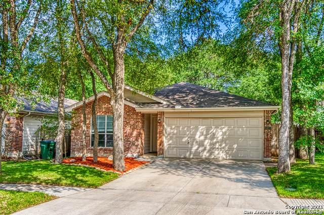 15911 Manes Grove, San Antonio, TX 78247 (MLS #1527684) :: The Castillo Group