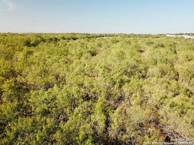 CR 4410, Pearsall, TX 78061 (MLS #1527811) :: The Glover Homes & Land Group