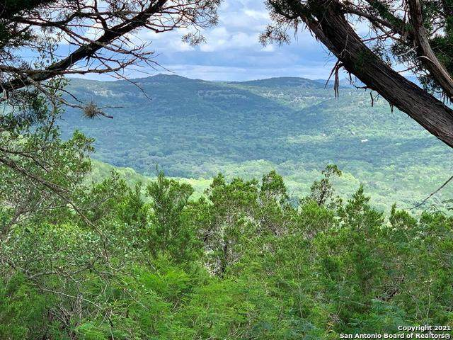88 Hill Side Trail - Photo 1